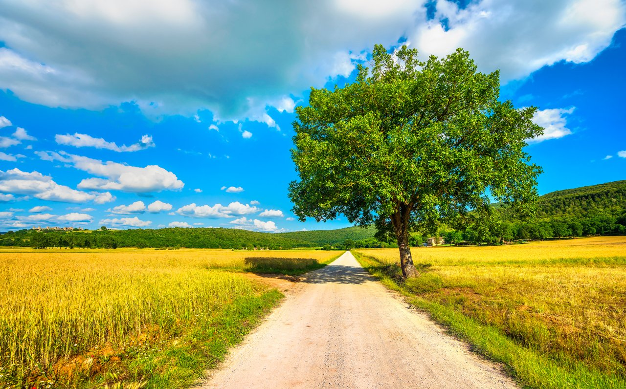 Read more about the article Una vacanza a Siena diversa: la via Francigena